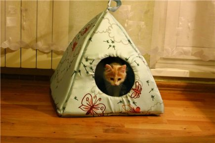 A house for a cat with fabric do-it-yourselfers
