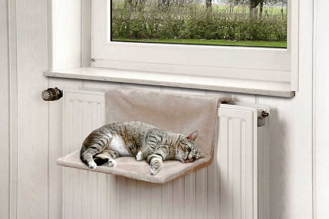 Do-it-yourself lounger for a cat