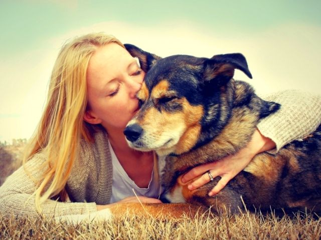 Taking a dog from the shelter, you will get a faithful and loyal friend. In addition, you do not need to pay a fabulous sum for it.