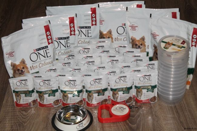 Purina Van for Dogs